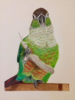 Parrot Final